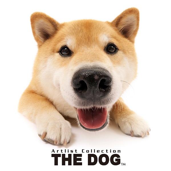 thedog2